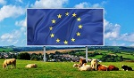 >В Европарламенте требуют перехода на веганство ради спасения всей планеты