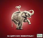 >Магнитогорск За цирк без животных! - Митинг у цирка 15 апреля