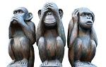>«Что-то сильно не так в нашем королевстве»<br><br>Ирина Новожилова, президент Центра защиты прав животных «ВИТА»