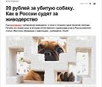>20 рублей за убитую собаку. Как в России судят за живодерство<br><br>Интервью Ирины Новожиловой проекту &quot;Сноб&quot;