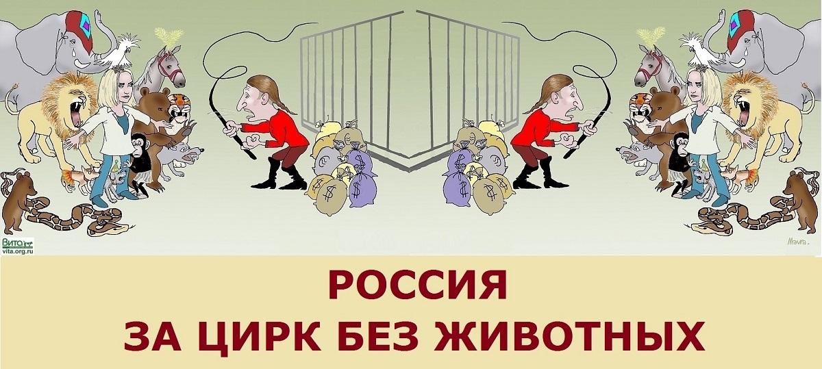 Международная и Всероссийская компания «За цирк без животных!»