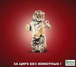 """15 апреля - Международная и Всероссийская акция """"За цирк без животных!"""""""