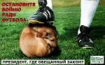 >ПРЕДОТВРАТИТЬ убийство животных к ЧМ-2018 и ПРИНЯТЬ полноценный Закон в защиту животных