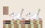 >Новая программа по патологической физиологии спасет жизни тысячам животных в странах бывшего Советского Союза