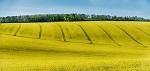 >Оксфорд: Новые данные о влиянии производства продовольствия на окружающую среду