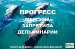 >В Мехико запретили дельфинарии
