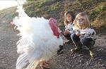 >Новый этичный вега́нский бренд детской одежды учит милосердию к животным