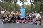 >VIVA! Организовала #TRASH кампанию против молочной индустрии в Лондоне