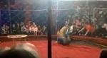 >Последняя капля. Цирки с животными подлежат немедленному безоговорочному запрету | ВИДЕО