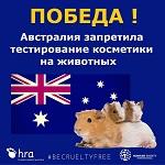 >Австралия запретила тестирование косметики на животных