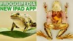 Лучшее приложение года Apple для iPad – Froggipedia