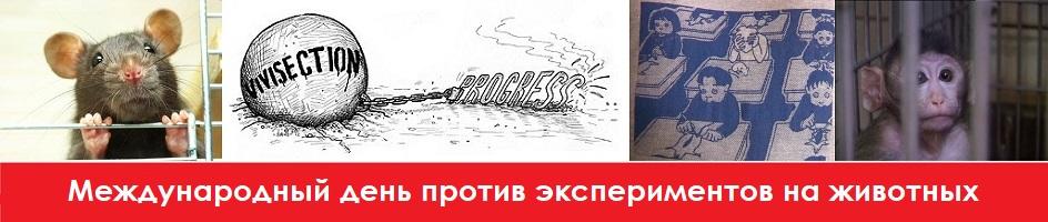 ПЕТИЦИЯ: Требуем принять Закон о запрете тестирования косметики на животных в России
