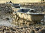 Животные, разводимые для еды, производят 45 тонн отходов в секунду! (с) Фото: Goveg.com