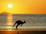 Австралия официально признала веганство полезным для здоровья