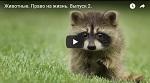 >Право на жизнь. Первый Вегетарианский телеканал и ВИТА: Охота - это убийство (ВИДЕО)