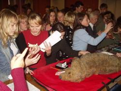 Студенты СПГАВМ изучают альтернативы к опытам на животных